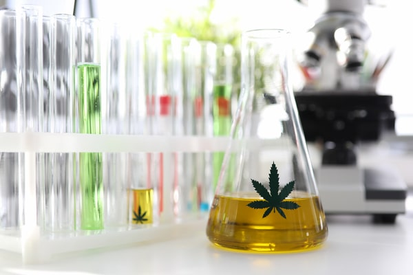 Test-tube-with-yellow-cbd-oil-in-chemisrtry-lab-research-background-closeup